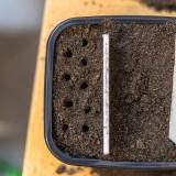 Löcher für die Samen