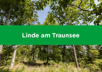 Linde am Traunsee