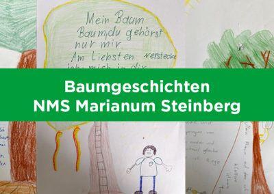 Baumgeschichten von Schülerinnen und Schülern aus Steinberg