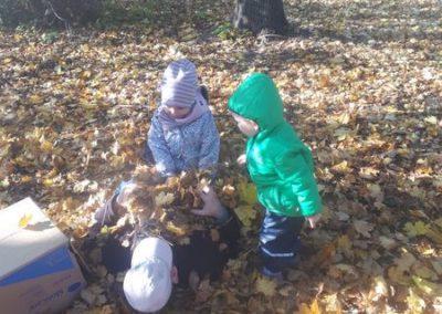 Der Blätter-Herbst von Martin