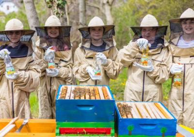 Bienen-Projekt für Kobersdorf