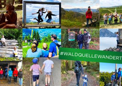 Rückblick: #WALDQUELLEWANDERT 2020